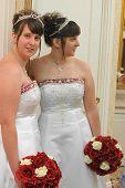 Brides Shadow