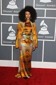 LOS ANGELES - FEB 10:  Esperanza Spalding arrives at the 55th Annual Grammy Awards at the Staples Ce
