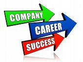 Company, Career, Success In Arrows