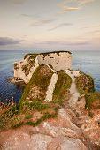 Old Harry Rocks Jurassic Coast Unesco Dorset England At Sunset