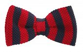 Bow tie with red and navy blue stripes