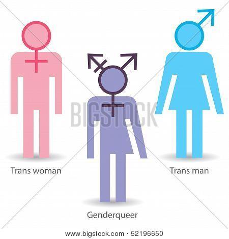 Genderqueer transsexual