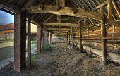 Shelter shed