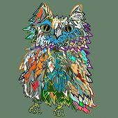 Cute cartoon Owl, cartoon drawing,  illustration for children, vector illustration for t-shirts.