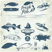 image of trout fishing  - Seafood labels - JPG