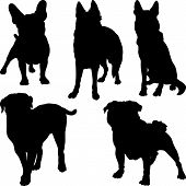 stock photo of pug  - set of silhouettes of pug French bulldog Shepherd bullmastiff breeds of dogs in various poses - JPG