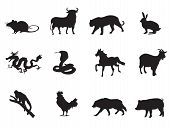 image of rabbit year  - chinese horoscope icons set for chinese new year design - JPG