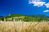 Idyllic Agricultural Mountain Landscape Of Croatia