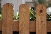 Garden wooden fence