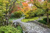 stock photo of bench  - Autumn colors along a winding walking path and stone bridge in a Japanese garden - JPG