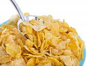 corn flakes in bowl isolated on the white backgound