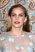 LOS ANGELES - MAR 24:  Anna Chlumsky at the