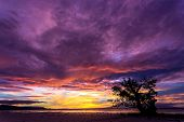 picture of nightfall  - Spectacular stormy sunset in the Philippines on the island of Siquijor with a lone mangrove tree silhouetted against the fiery orange sky - JPG