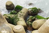 Breakwater stone close up , background, wallpaper