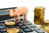 a pig and a calculator as a symbol photo for costs and income for a farmer in the landwirtschaft.ausgaben, receipts and accounting.