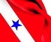 Flag Of Para
