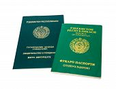 pic of passport template  - Uzbekistan passport and birth certificate isolated on the white background