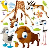 Vector animal set: canary, giraffe, gazelle, booby, bison, tilt