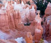 Thor's Hammer And Hoodoos Of Bryce Canyon