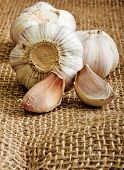 Garlic clove on burlap background