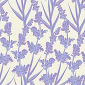 stock photo of wallpaper  - Spring lavender flowers seamless pattern background - JPG