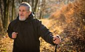 Senior man nordic walking, enjoying the outdoors, the fresh air, getting the necessary exercise