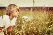 Beautiful child blowing away dandelion flower