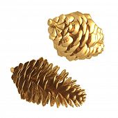Gilded Pinecones 3D