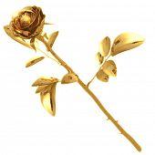Gilded Rose 01 3D