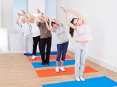Trainer And Customers Practicing Yoga At Gym