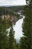 Waterfall In Yellwosotone