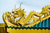 Chinese Style Golden Dragons On The Roof.