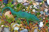 Plastic Figure Of A Crocodile On The Rock Garden