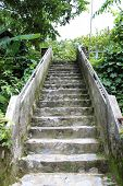 Old Stairs In Forest
