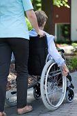Nurse Walking With Elderly Woman On Wheelchair