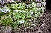 Curved Stone Retaining Wall Covered In Green Moss