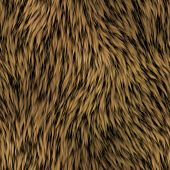 Fur Seamless Generated Texture