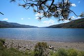 Vallecito Lake