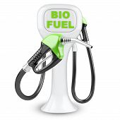 image of fuel economy  - Bio fuel concept with petrol pump machine - JPG