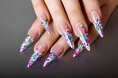 image of nail-design  - Female hand with manicure  and beautiful design on  nails - JPG