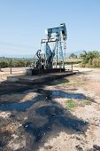 picture of crude  - pump jack with crude oil contaminatate to environment - JPG