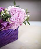 Peony On The Wooden Background