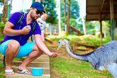 Man Feeding Ostrich On Zoo Farm, Focus On Ostrich