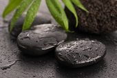 stock photo of pumice-stone  - Green leaf on spa stone on wet black surface - JPG