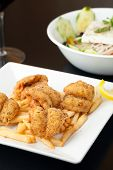 Fried Shrimp and Fries