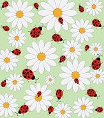 Ladybird and daisy vector pattern