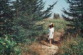 Beautiful Woman Walking On Summer Nature