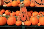 Fall display of pumpkins and Jack-O-Lanterns