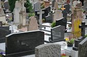 France, The Cemetery Of Obernai In Alsace
