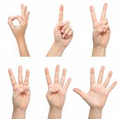 Isolated Woman Hands Show The Number